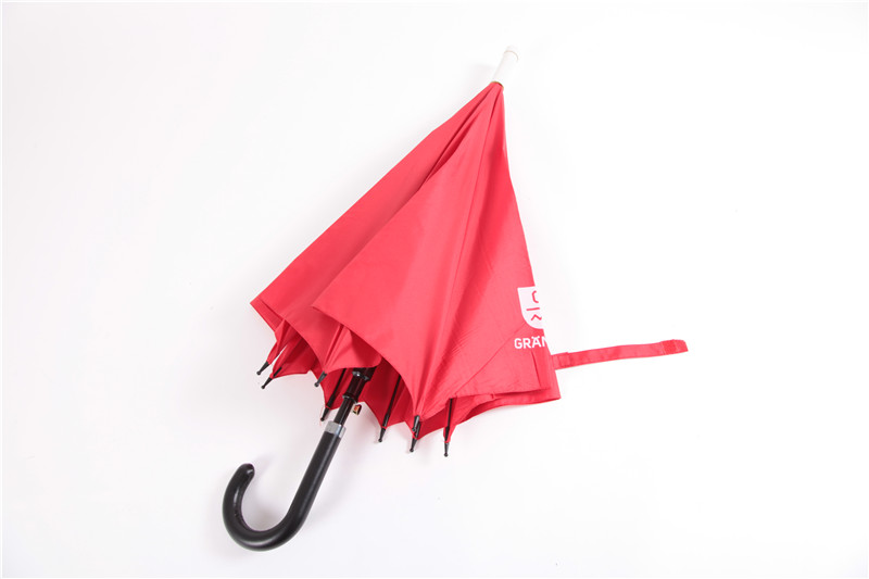 直把自开伞